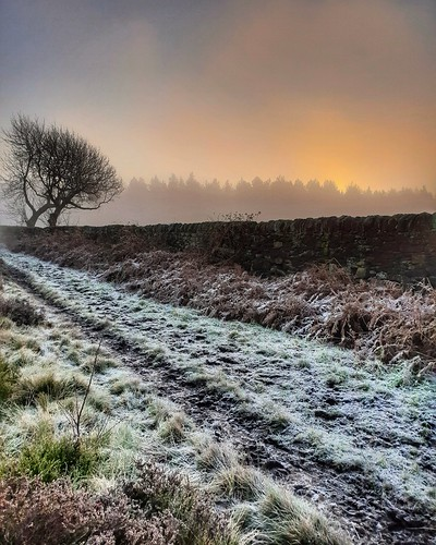 landscapephotography landscape winter wintersun frost frozen sunrise outdoor nature