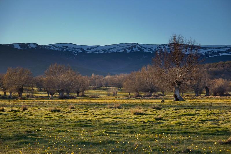 valle-mantequilla-soria