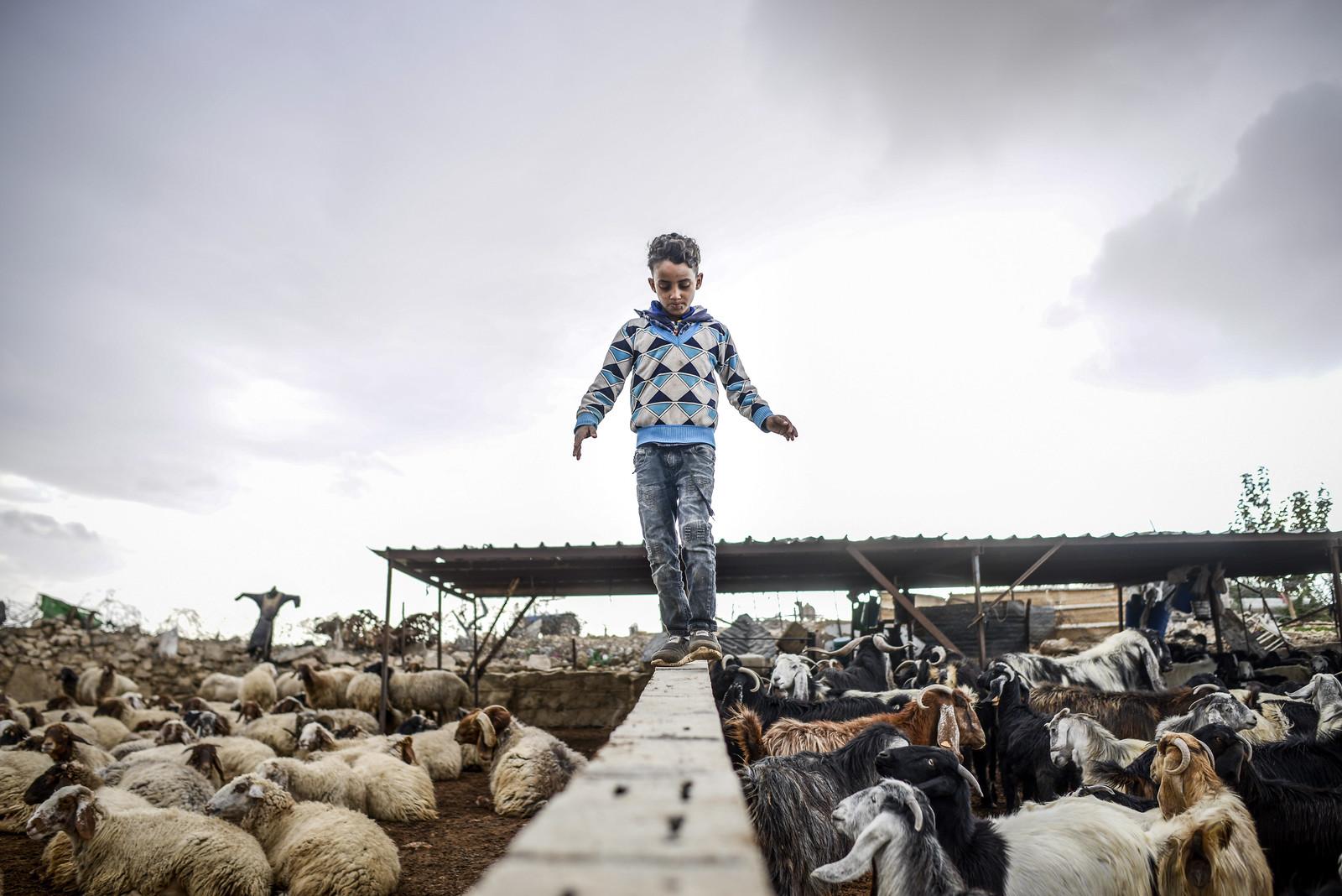Hogyan él ma egy nomád család a civilizáció szélén?