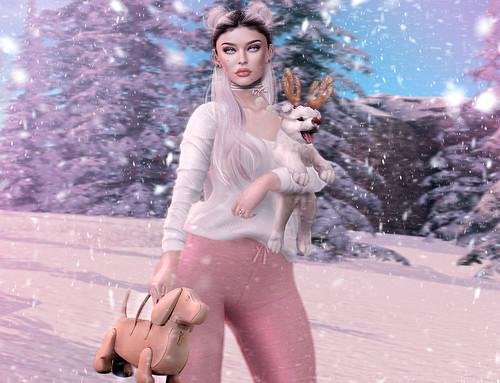 _ snow pup _