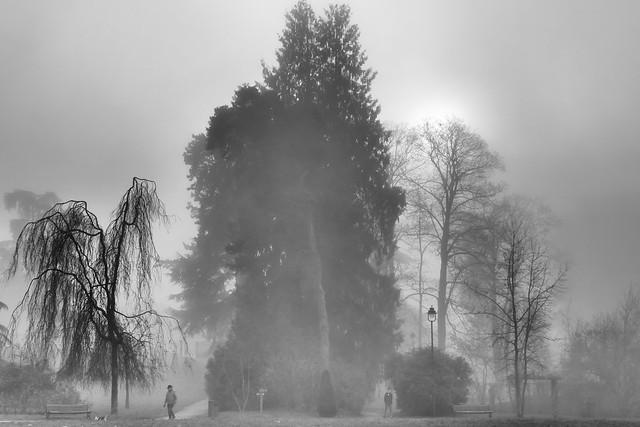 12.19.19.The fog of Claudel