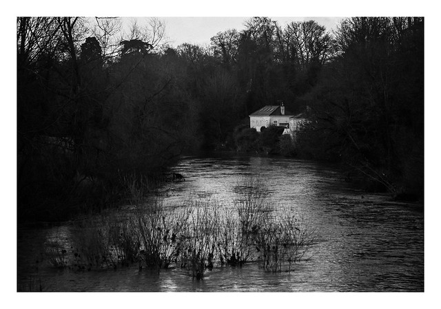 FILM - Downstream