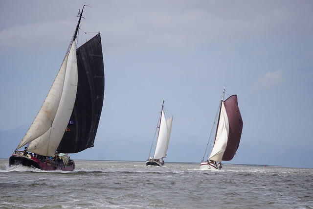 Waddenzee sail 4