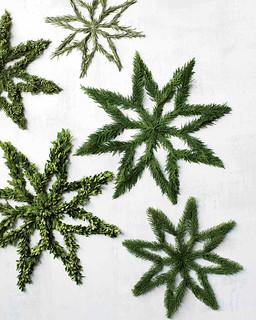 Evergreen Star Wreaths