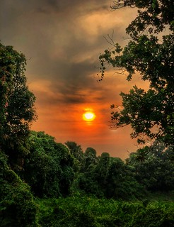 Sublime Sunset
