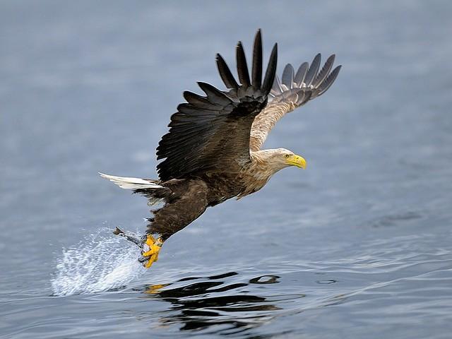 Norway, sporting fishing