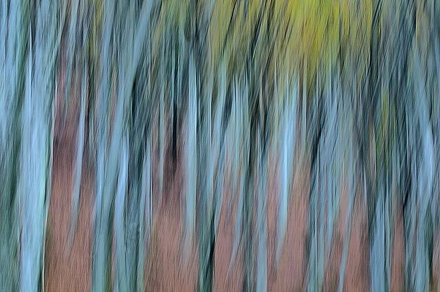 Italy, Autumn palette