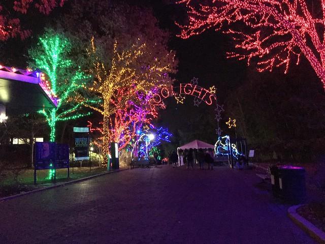 Zoo lights 2019