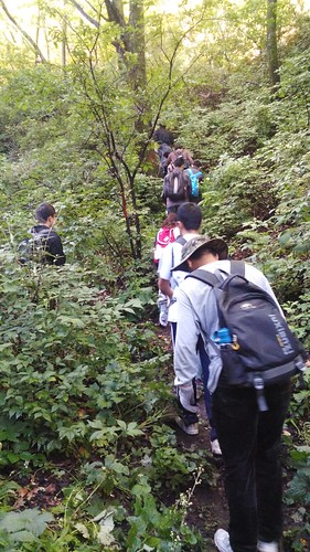 Tue, 08/04/2015 - 08:13 - Donglingshan Field Crew