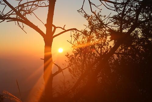 Sun, 10/07/2018 - 06:02 - Baishanzu sunrise