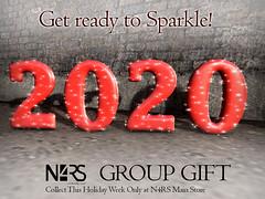 N4RS 2020 NY Group Gift