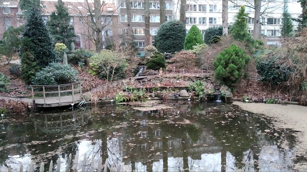 49249746313 11dc8ca110 b El jardín botánico más...