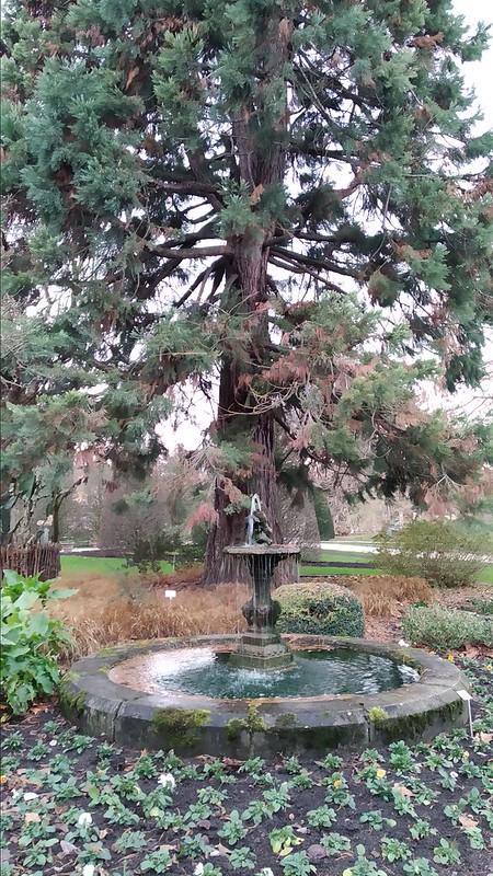 49249747903 3658fb6e9f c El jardín botánico más...