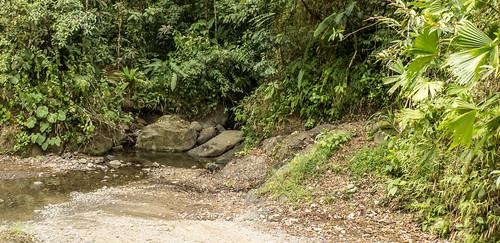 CostaRica-19.jpg