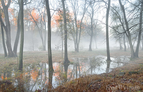 brandywinecreek brandywineriver brandywine delaware reflection fog firststatenationalhistoricalpark sunrise sunset floodplain newcastlecounty