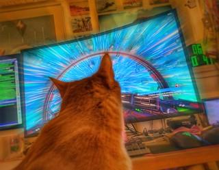 No Man's Sky feline star explorer