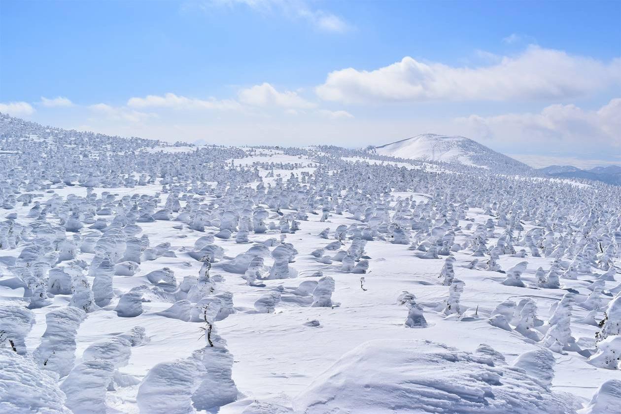 西吾妻山 樹氷・スノーモンスター 雪山登山
