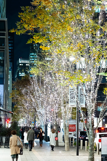 Shooting winter lights in Tokyo