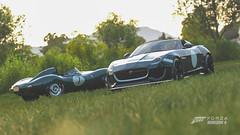 Jaguar D-Type & Project 7