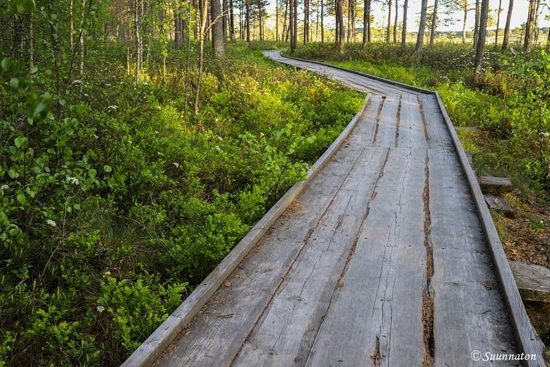 Torronsuon kansallispuisto, esteettömät pitkospuut