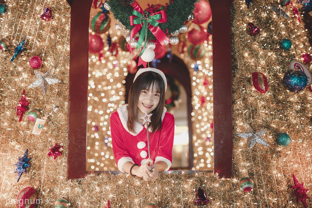 Lightroom-christmas-vintage-04