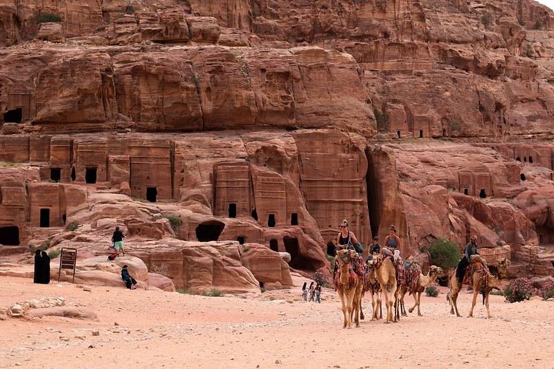 Petra, kamelit