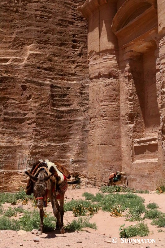 Aasi, luostari, Petra