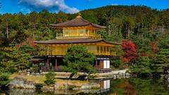 Kinkaku-ji II, Kyoto, 20191110
