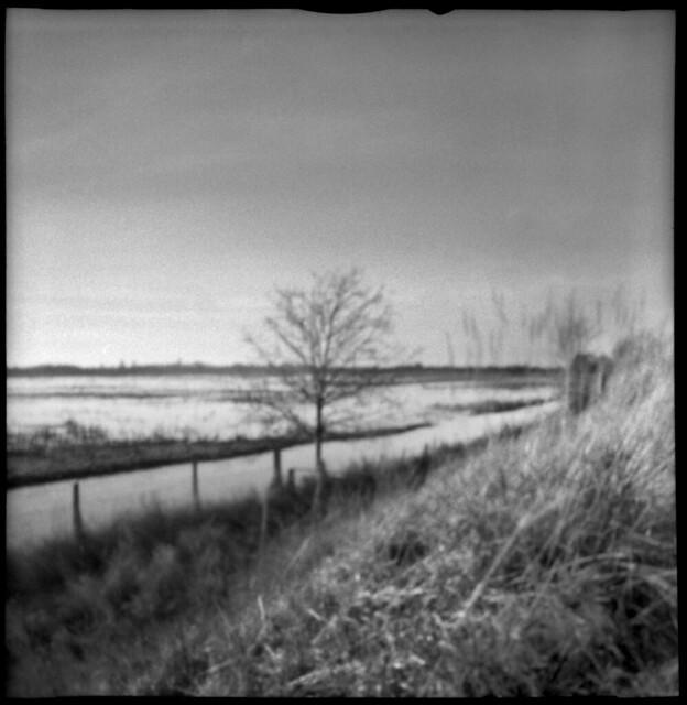 2604 Marsh View.