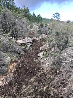 Restauration du chemin après la piste annexe de Luviu : état après les travaux