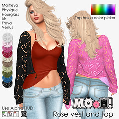 Rose vest and top