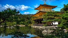 Kinkaku-ji III, Kyoto, 20191110