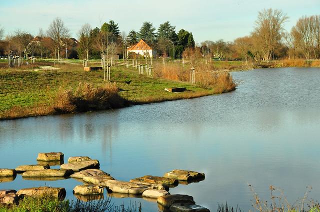 Fischkinderstube Edingen-Neckarhausen im Dezember 2019 ... Brigitte Stolle