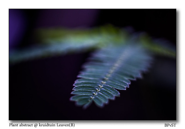 abstraction from nature