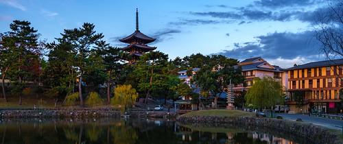 sarusawanoikepond kōfukujifivestoriedpagoda sunset