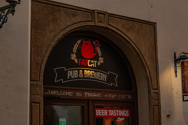 Fat Cat Pub & Brewery 02