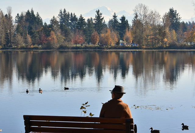 AUTUMN REFLECTED IN A PEACEFUL MILL LAKE, ABBOTSFORD,  BC.   MOUNT BAKER IS IN THE BACKGROUND.