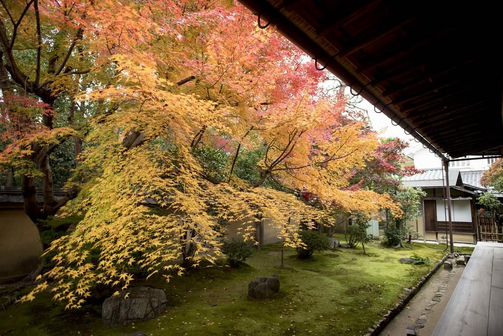 Kōrin-in 興臨院