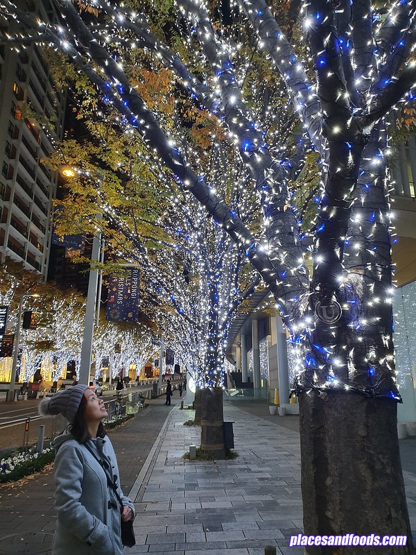 roppongi hills christmas illumination 2019 places and foods
