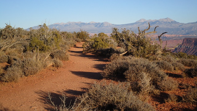 Utah - Dead Horse Point SP -- on a trail - La Sal Mountains in the back