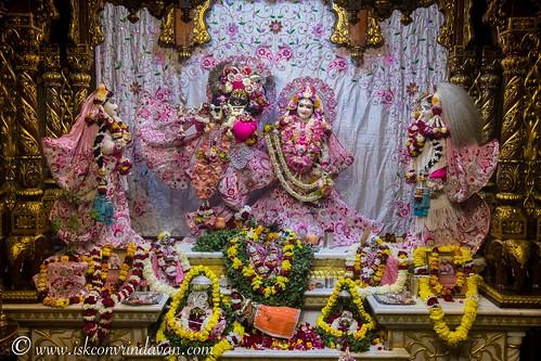 ISKCON Vrindavan Deity Darshan 22 Dec 2019