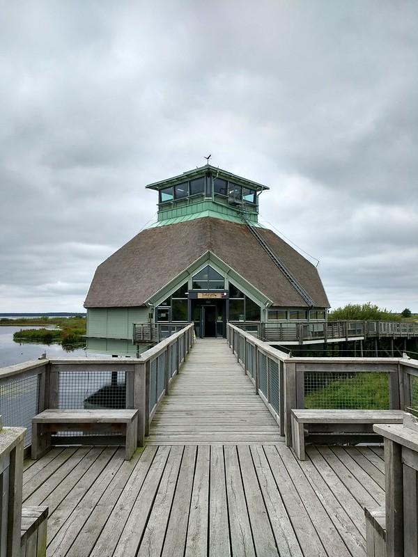 Hörnborgasjön naturum