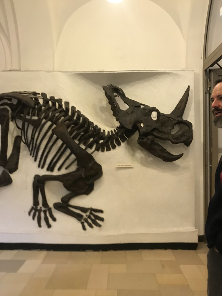 Dad with dinosaur