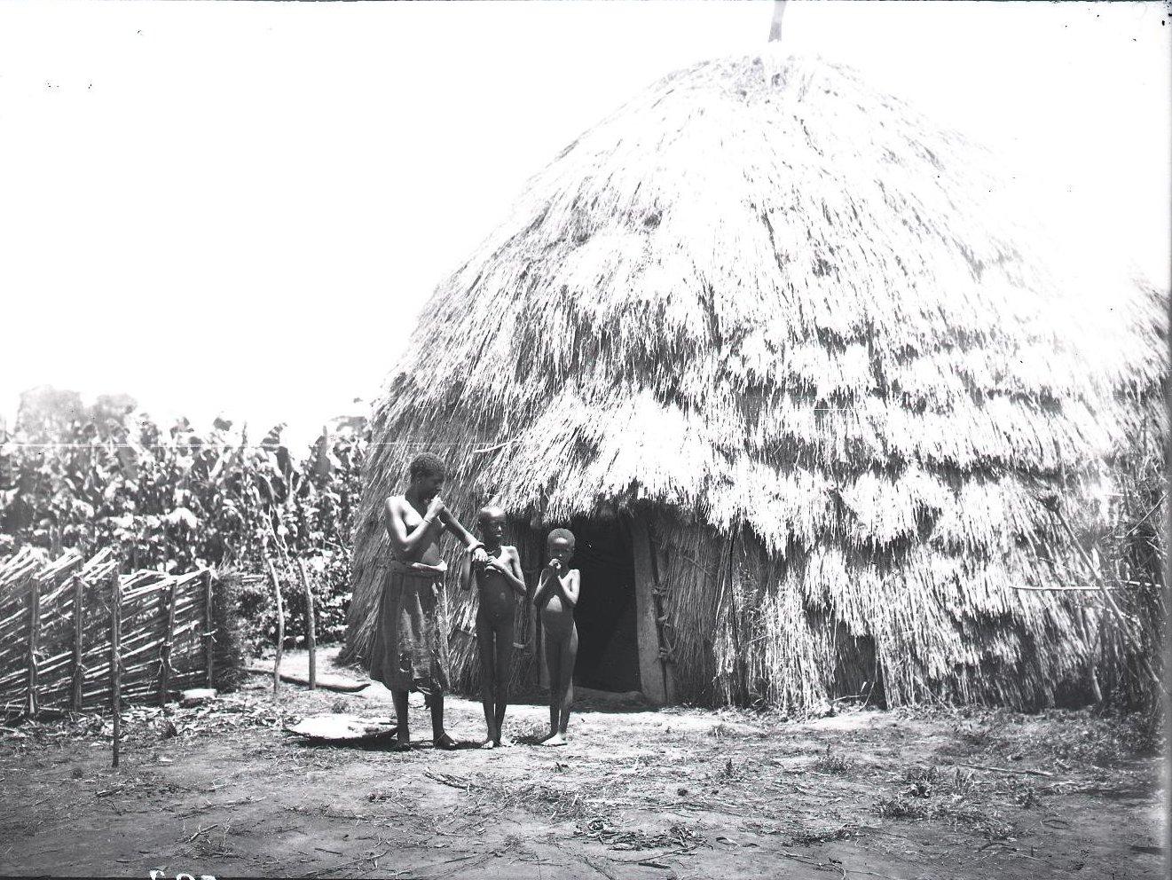 523. Традиционное жилище в провинции Уоламо
