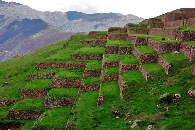 3D Checkerboard Terraces - Huchuy Qosqo Archaeological Site -  Cusco, Peru