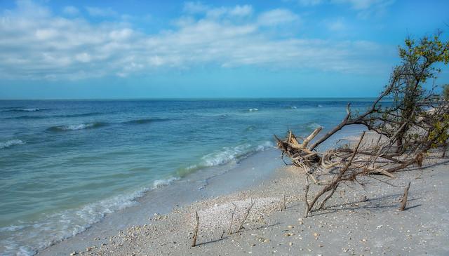 Honeymoon Island on the Gulf
