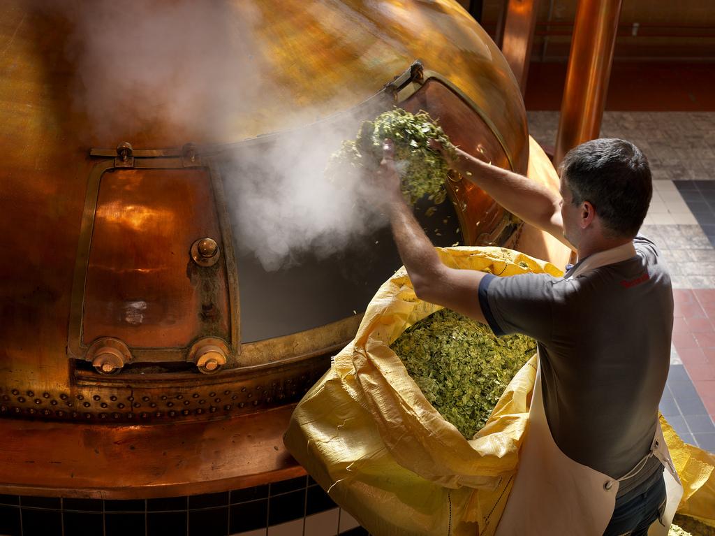 Пивовары озвучили свои прогнозы на 2020 год