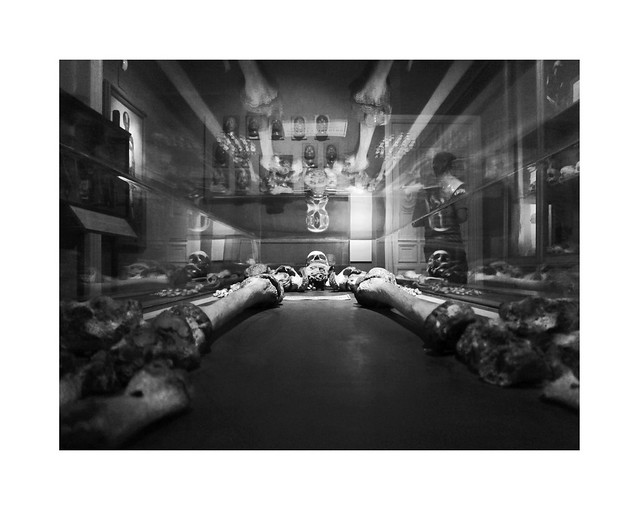 Anthropology Museum II