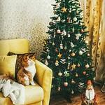 Merry Xmas!!!!....