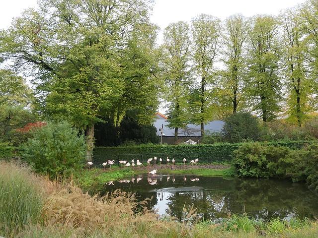 Ouwehands Dierenpark, Rhenen